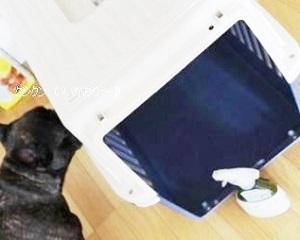 愛犬のケージもナチュラルウオッシュアロマでお掃除