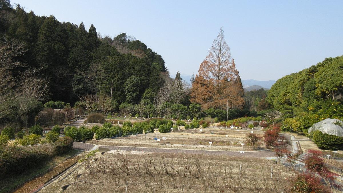1603京都2d1-20-IMG_0027