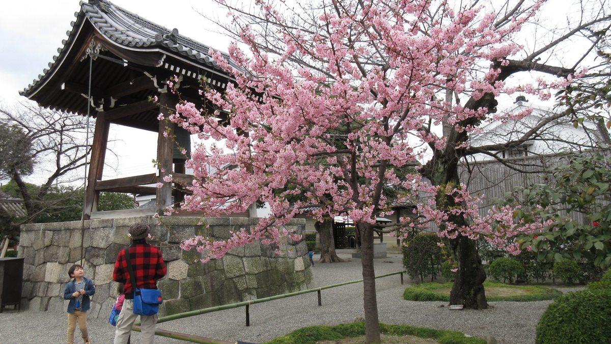 1603京都2d2-24-IMG_0037