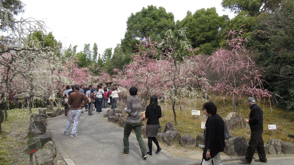1603京都2d2-21-IMG_0032