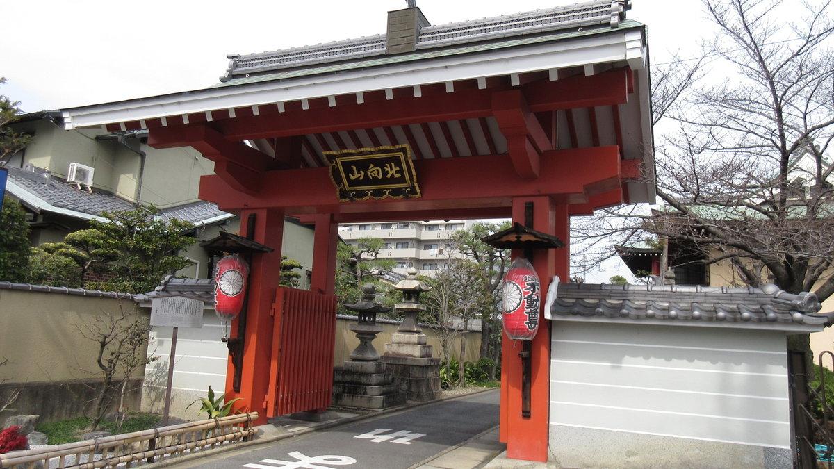 1603京都2d2-19-IMG_0028