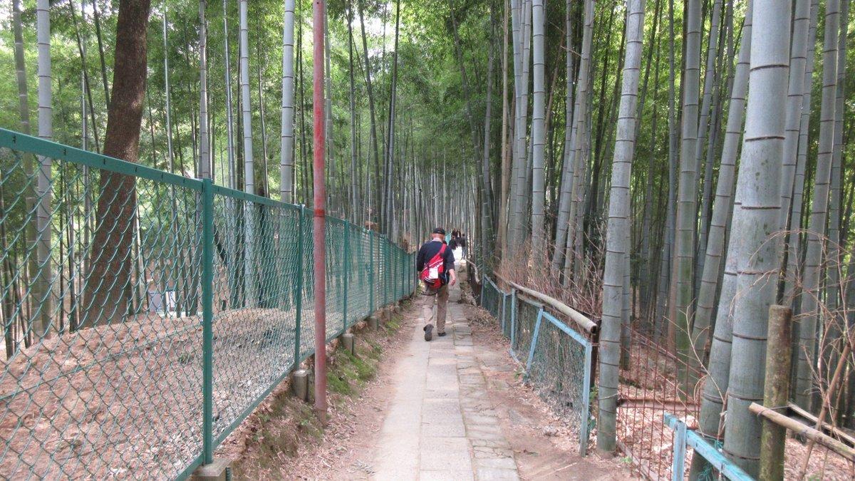 1603京都2d2-15-IMG_0021b