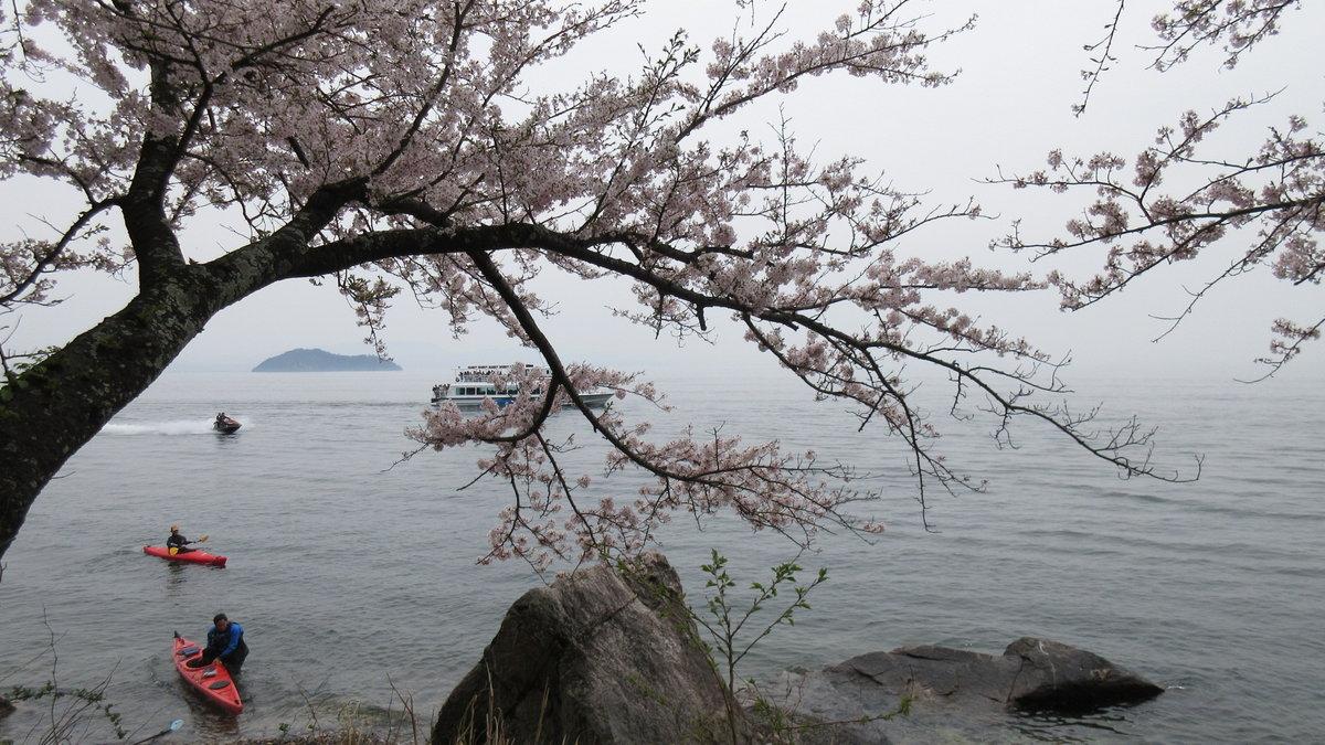 1604海津大崎-09-IMG_0022