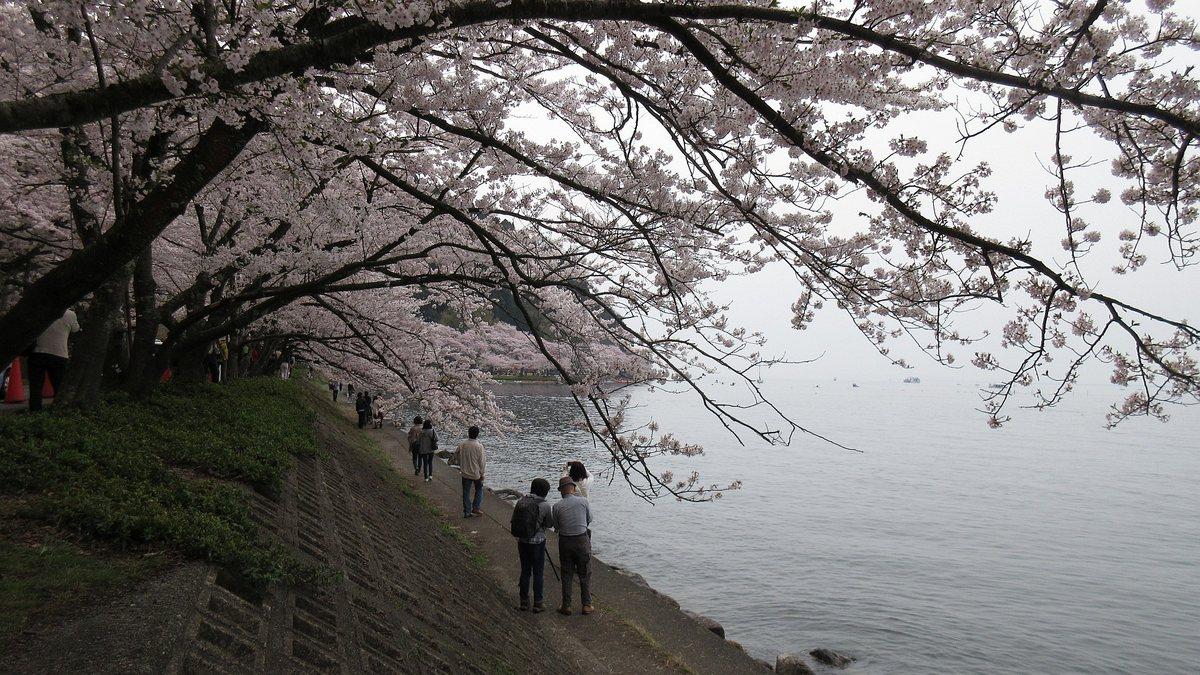 1604海津大崎-04-IMG_0015