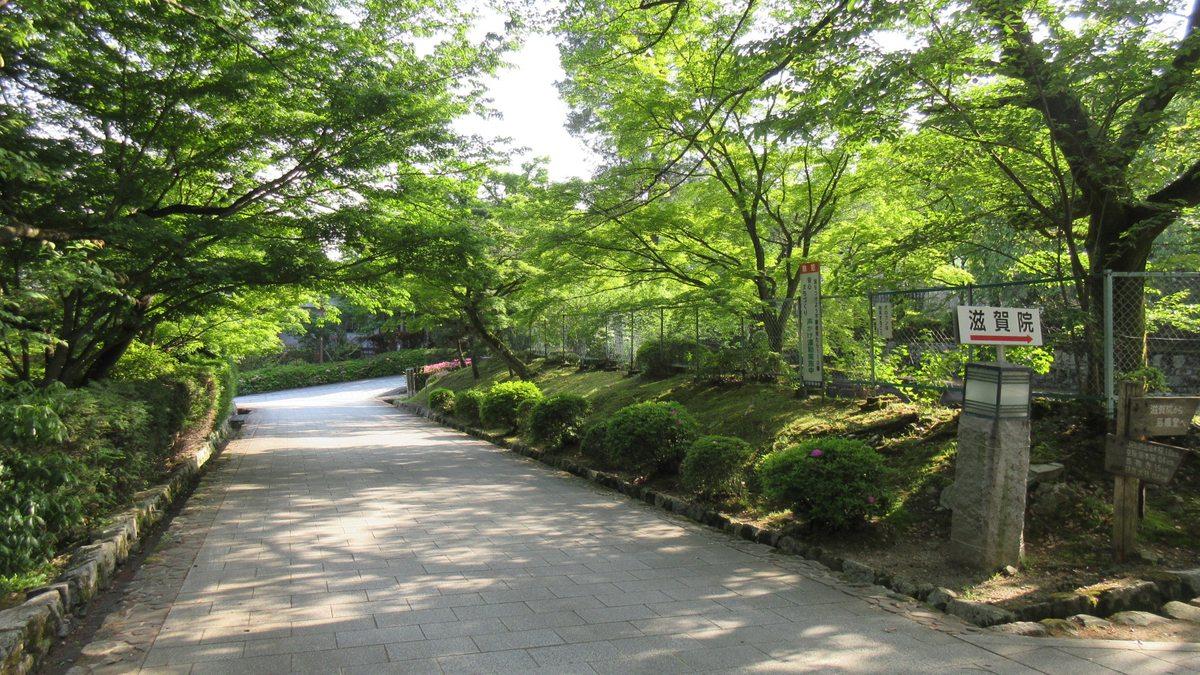 1605比叡山-77-IMG_0414
