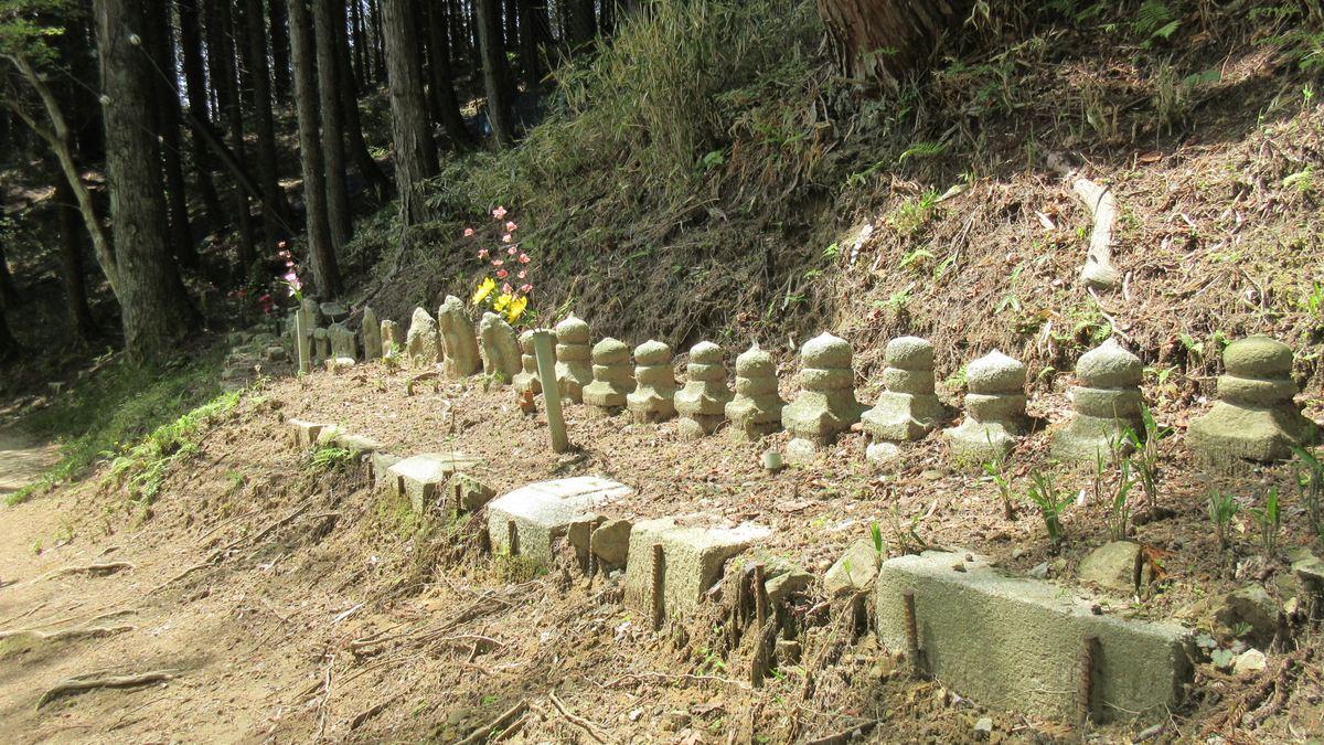 1605比叡山-44-IMG_0319