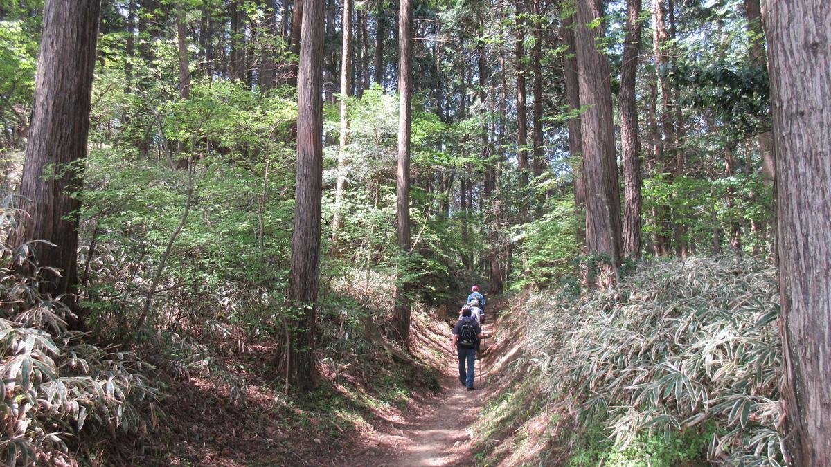 1605比叡山-28-IMG_0287