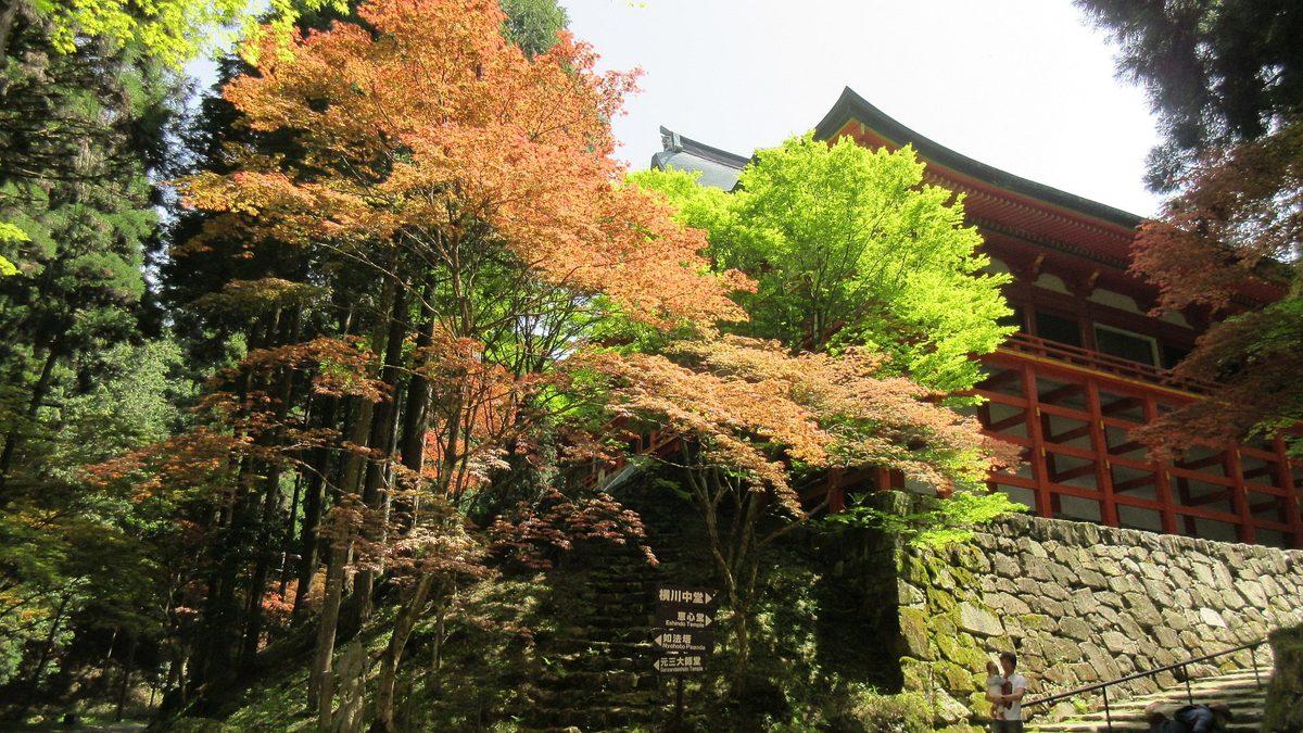 1605比叡山-10-IMG_0247