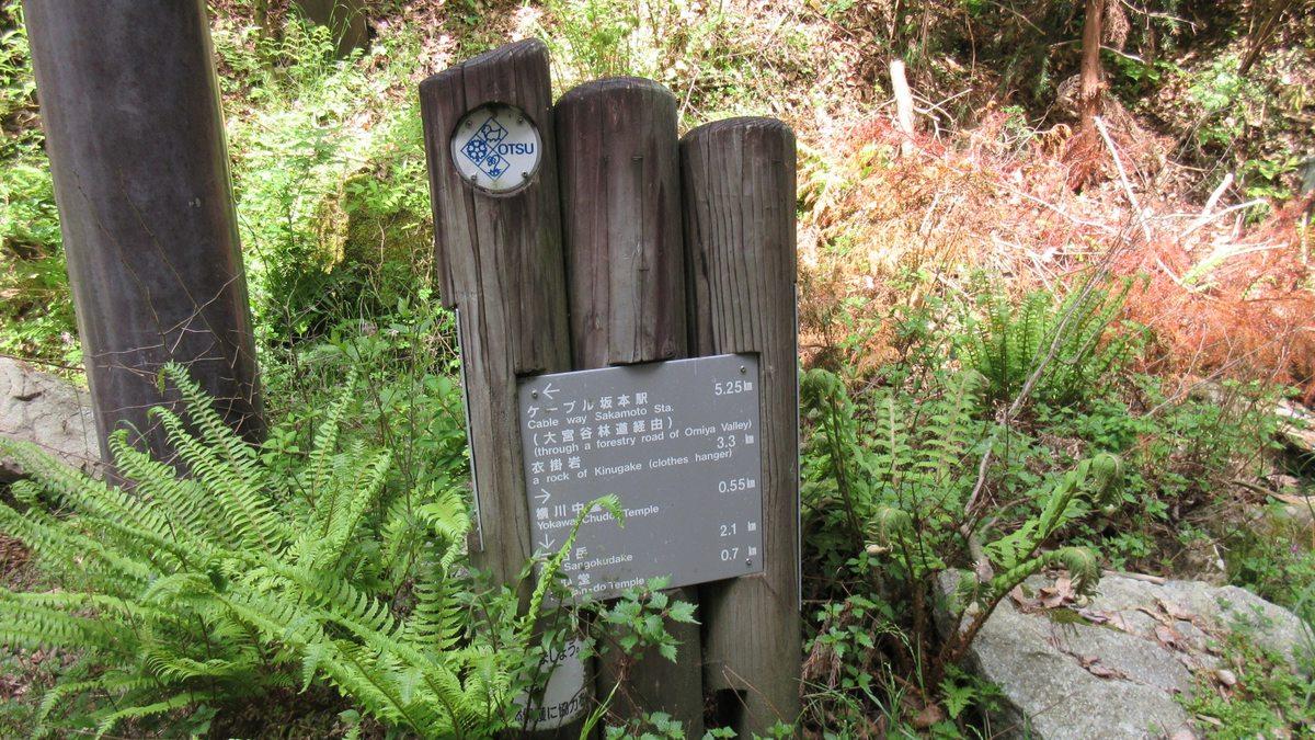1605比叡山-09-IMG_0244