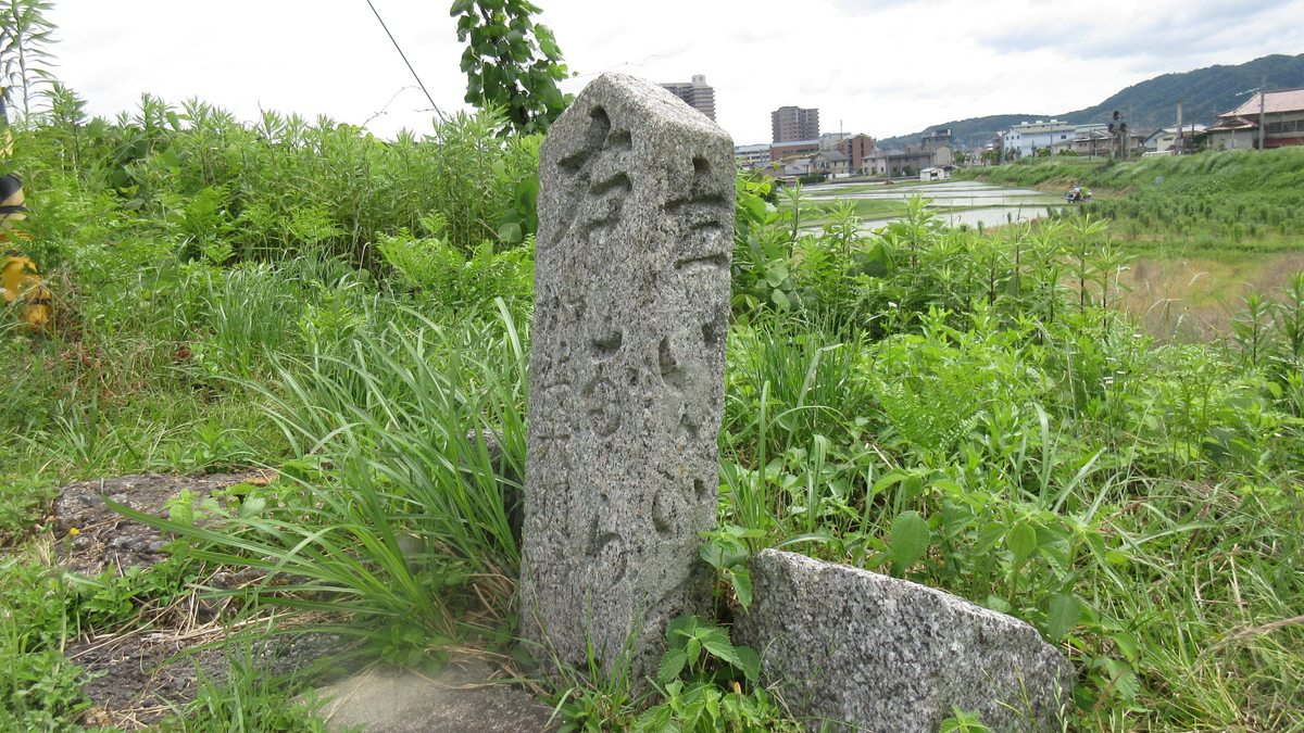 1606加茂-04-IMG_0752