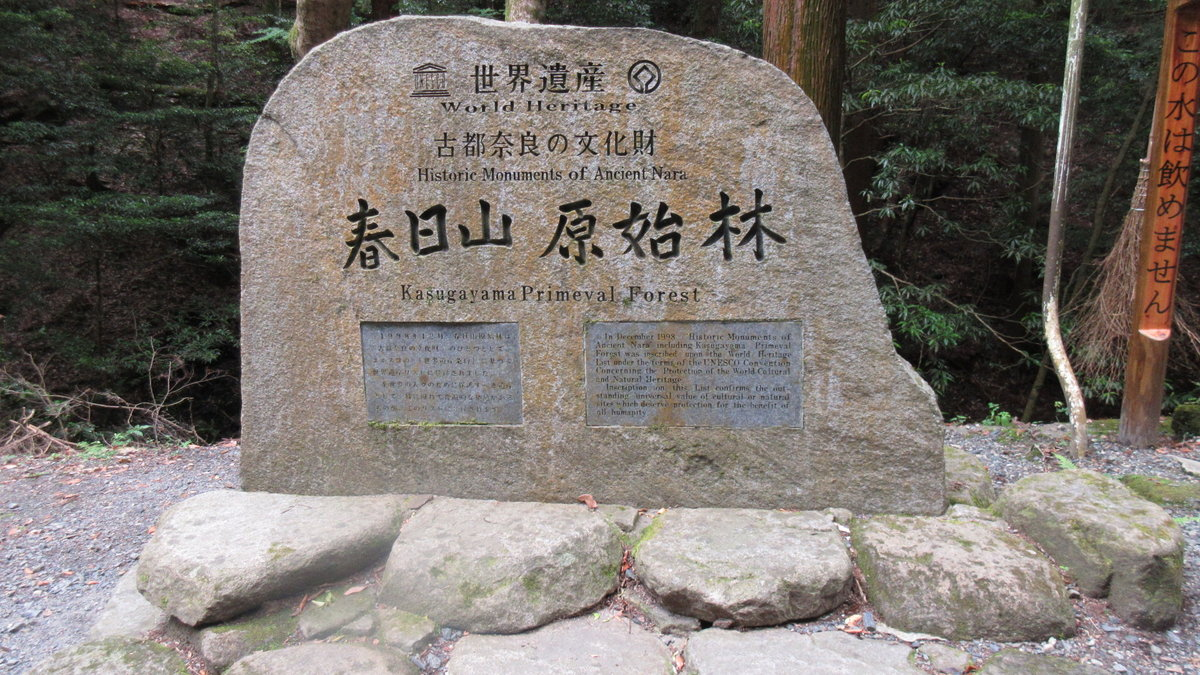 1612若草山-12-IMG_0810