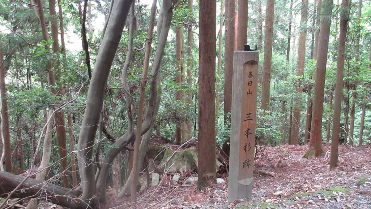 1612若草山-07-IMG_0801