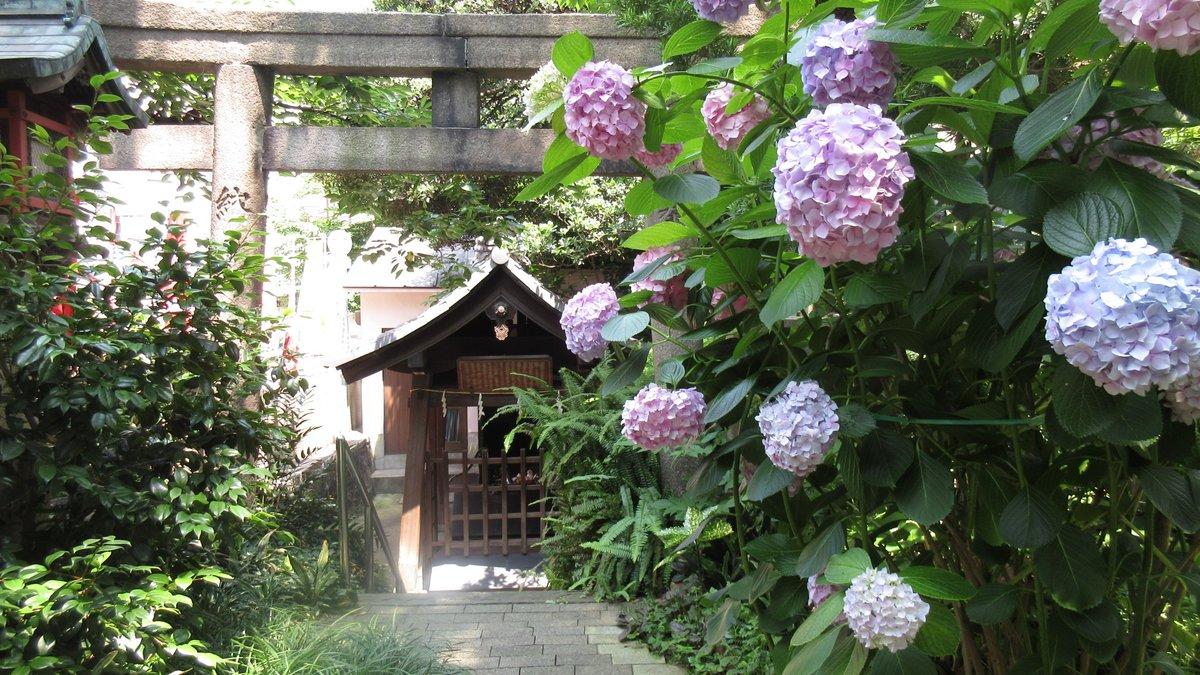1606大阪-41-IMG_0946