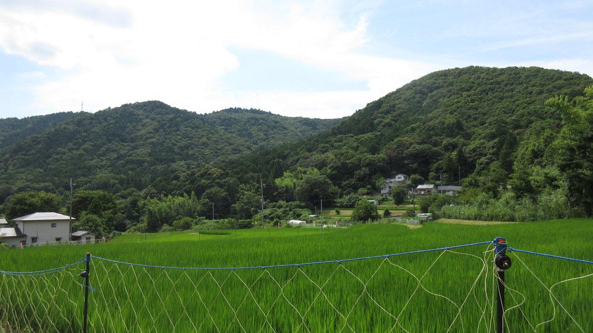 1607妙見山-41-IMG_0118
