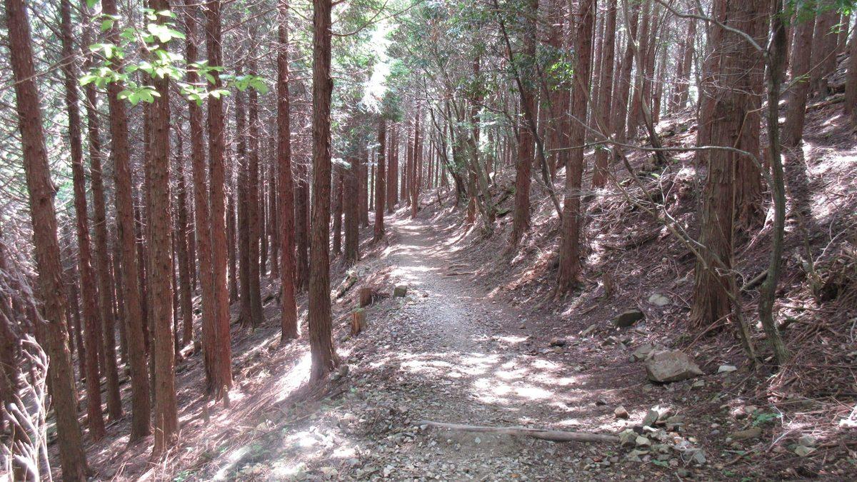 1607妙見山-37-IMG_0112