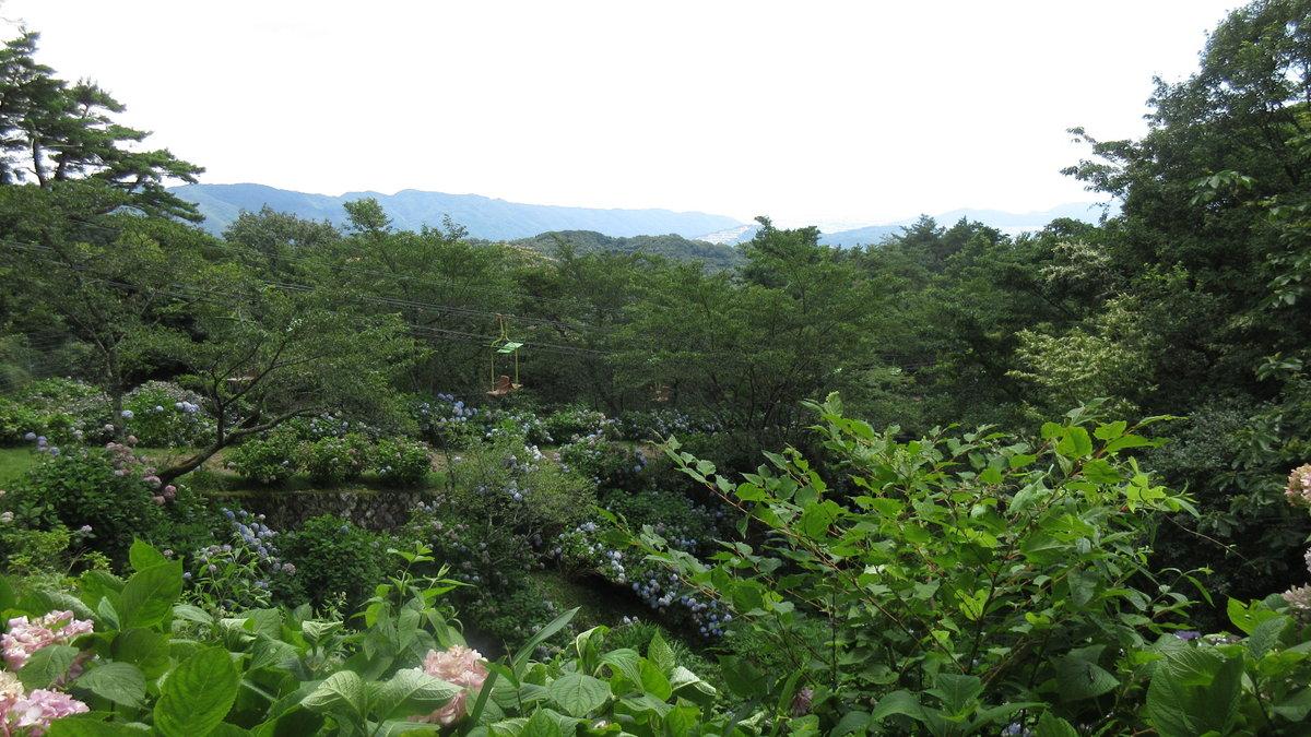 1607妙見山-25-IMG_0093