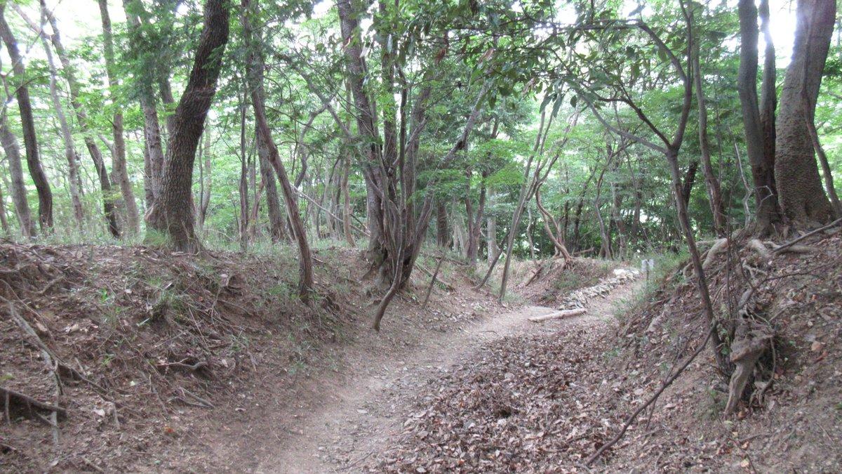 1607妙見山-39-IMG_0115