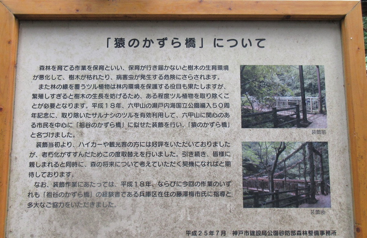 1608六甲-30-IMG_0305かずら橋