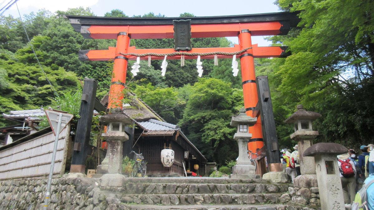 1608清滝-18-IMG_0366