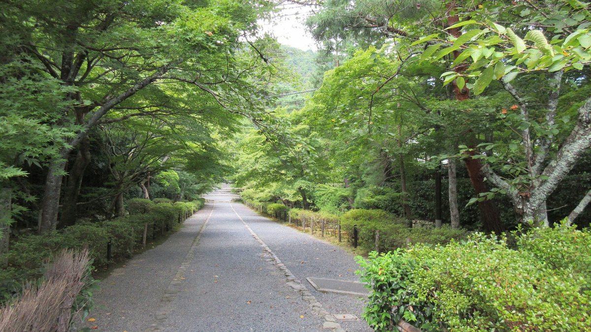 1608清滝-14-IMG_0358
