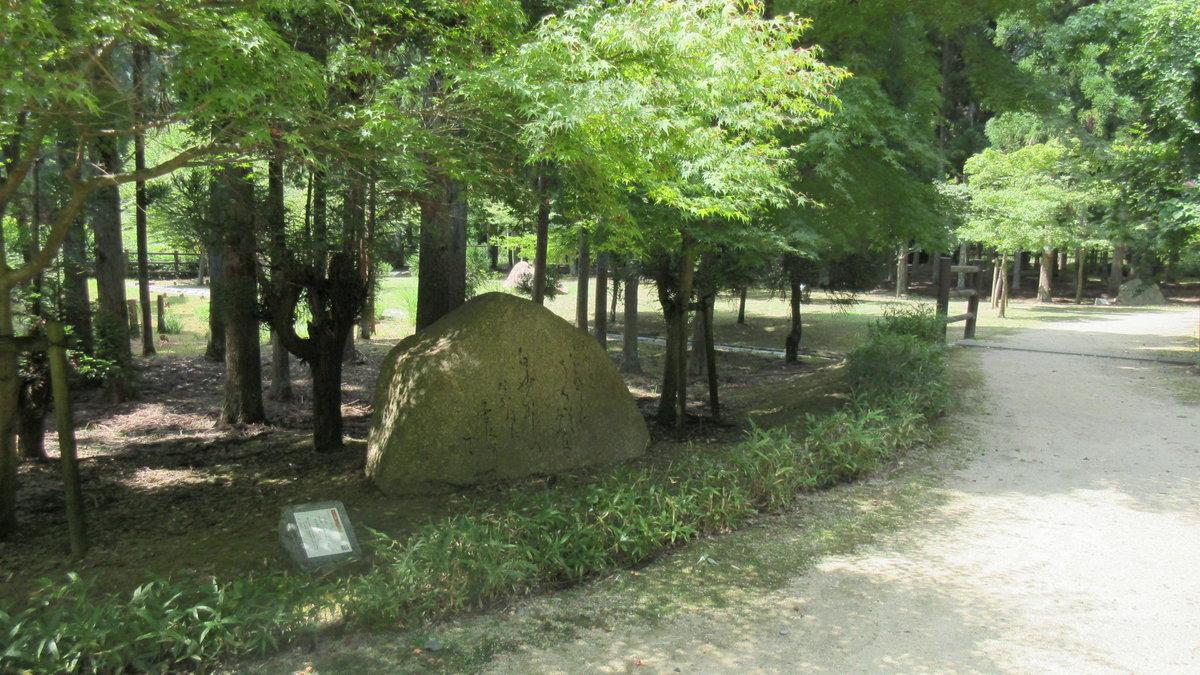 1608清滝-11-IMG_0356