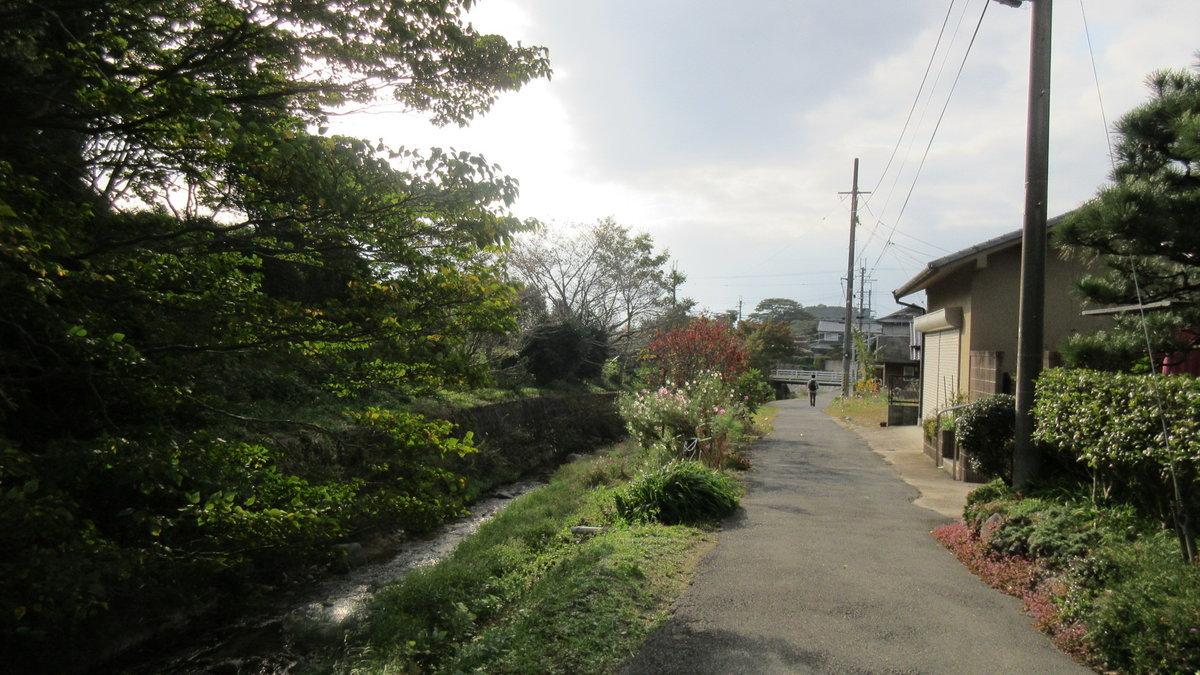 1611桜井-38-IMG_0979
