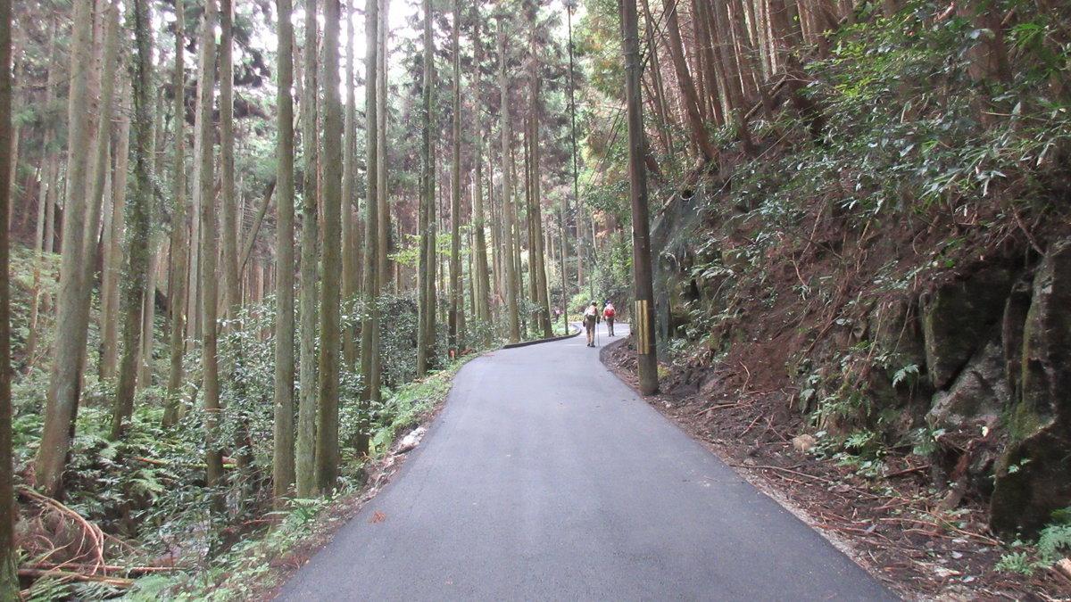 1611桜井-32-IMG_0970