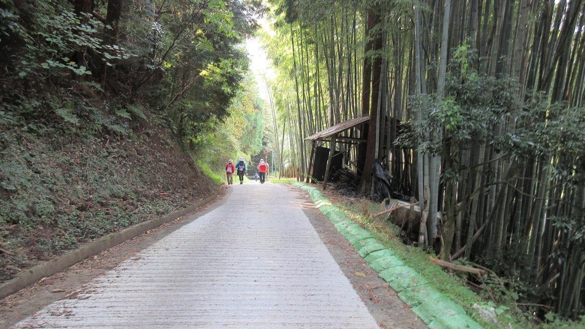 1611桜井-30-IMG_0967