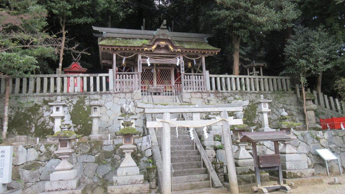 1611桜井-28-IMG_0964