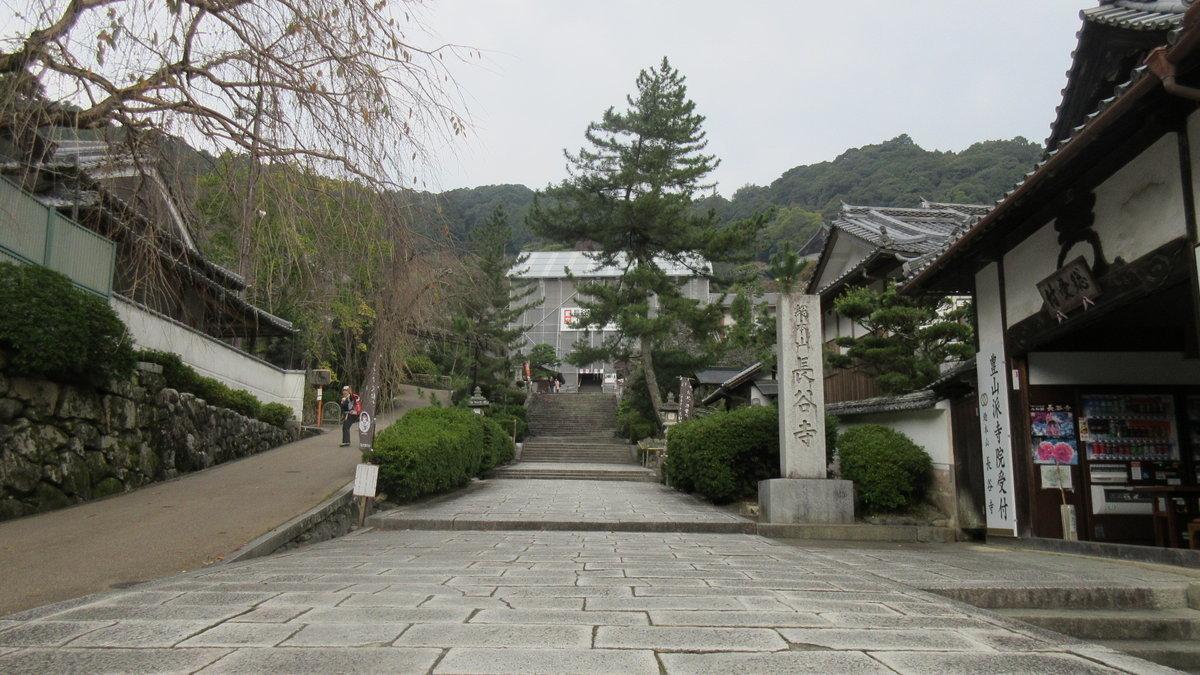 1611桜井-15-IMG_0942