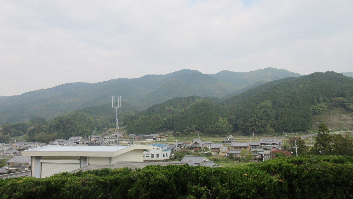 1611桜井-12-IMG_0938