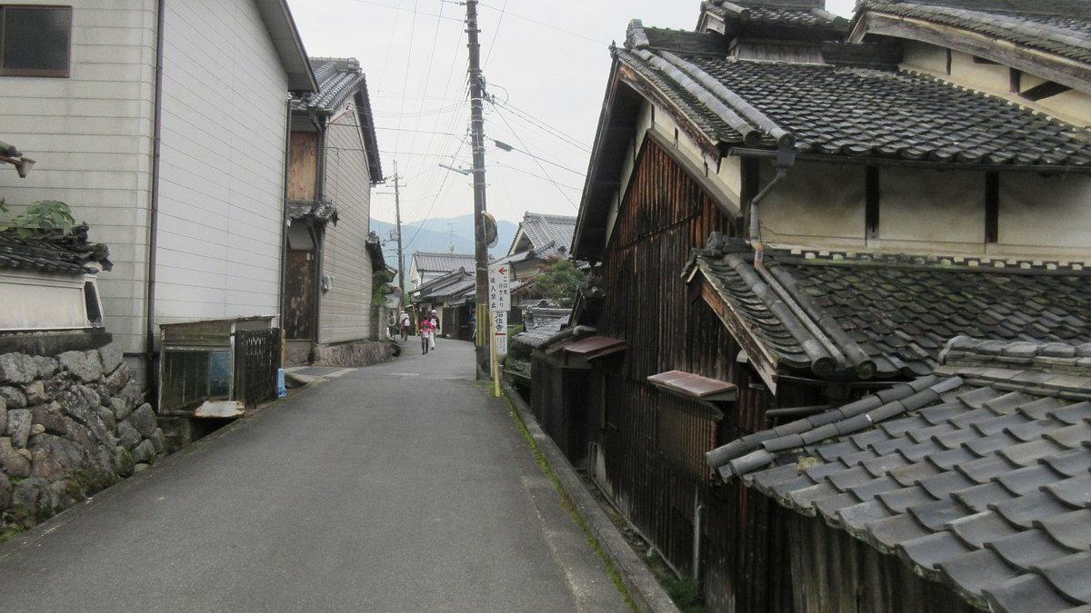 1611桜井-02-IMG_0920