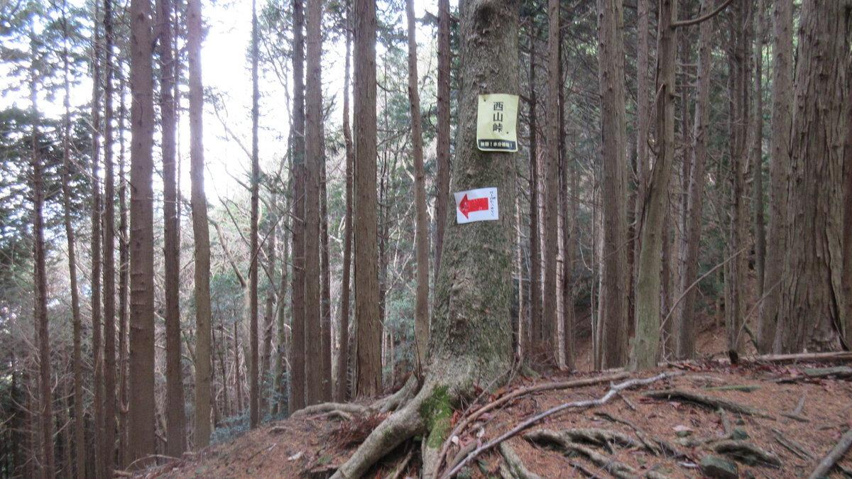 1612比叡山-44-IMG_1251