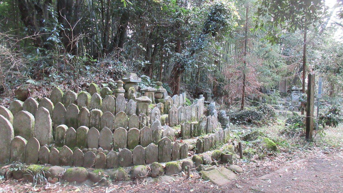 1701-10-浄瑠璃寺-IMG_1420