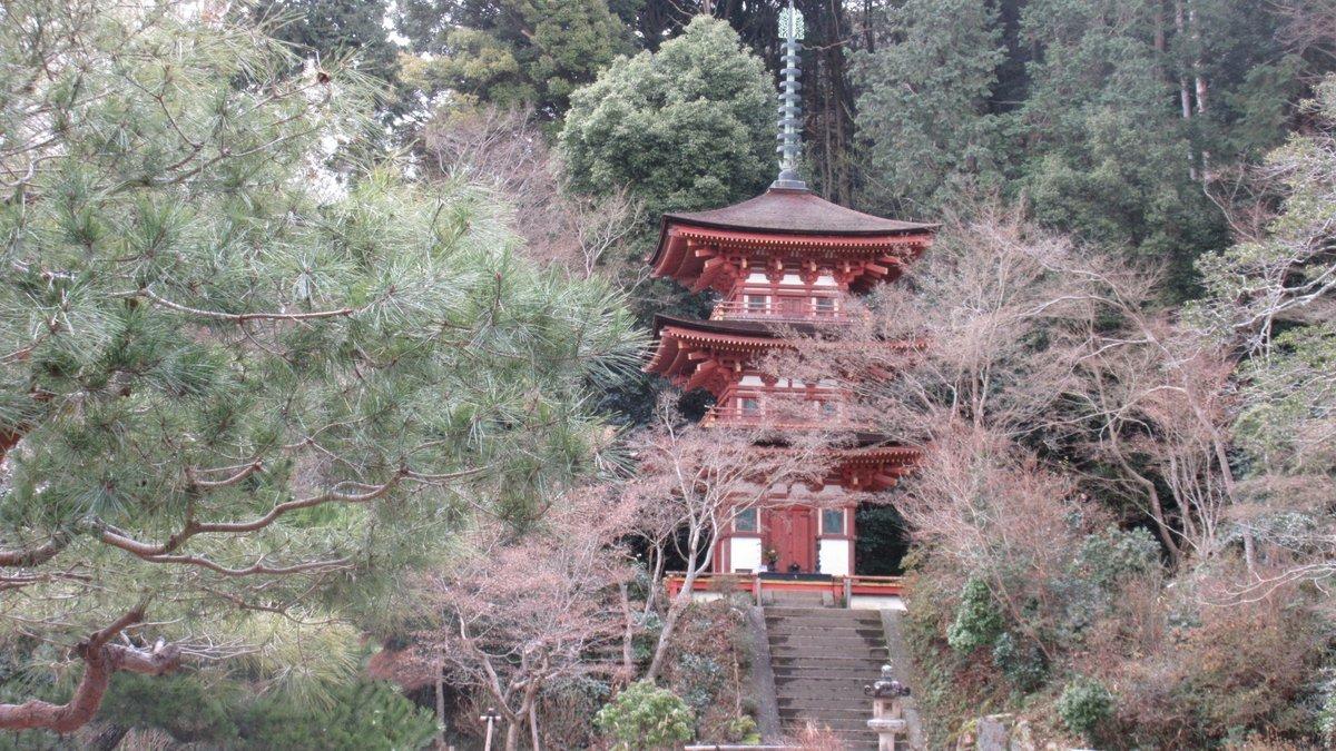 1701-08-浄瑠璃寺-IMG_1416