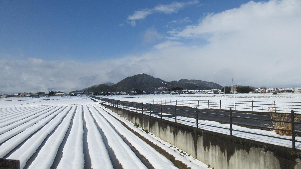 1702-26-琵琶湖②-IMG_0054