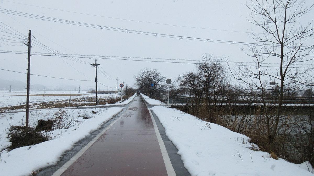 1702-22-琵琶湖②-IMG_0050
