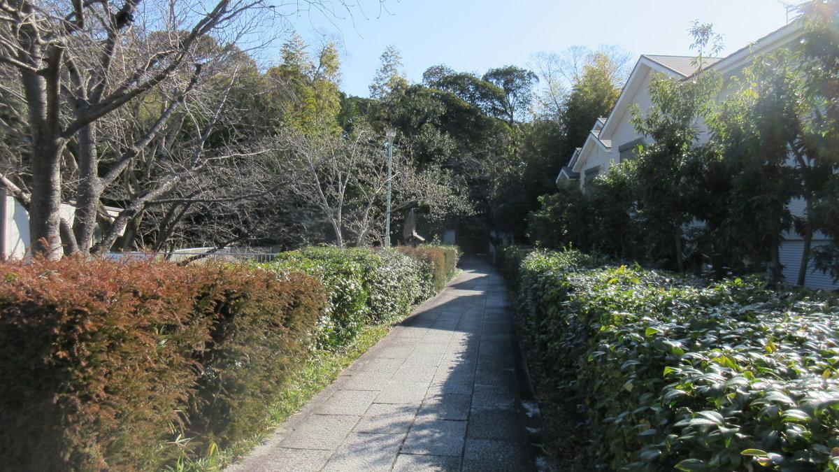 1702-12-聖徳太子-IMG_0077