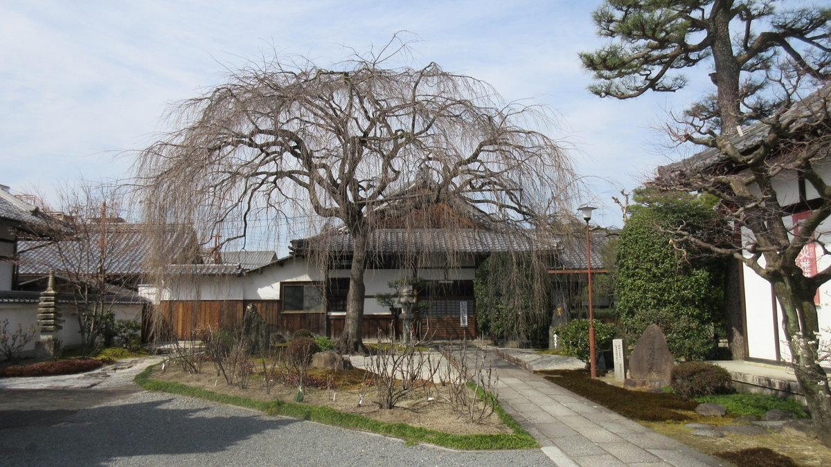 1703-37-京都1目-IMG_0296