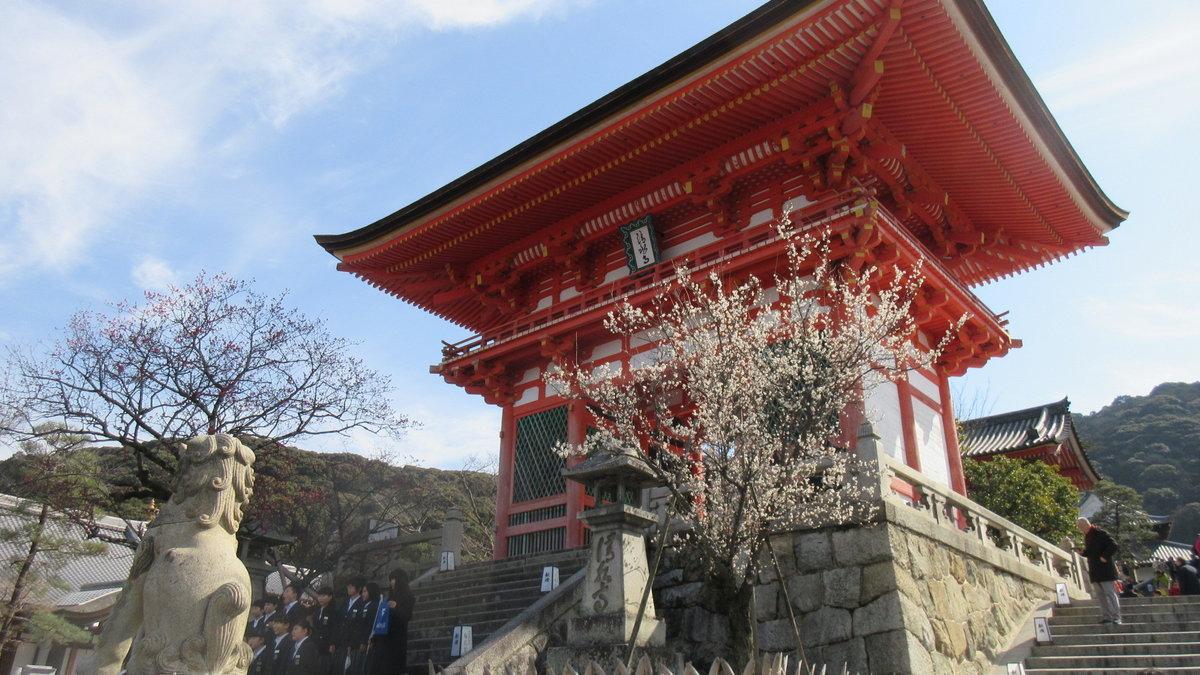 1703-18-京都1目-IMG_0259