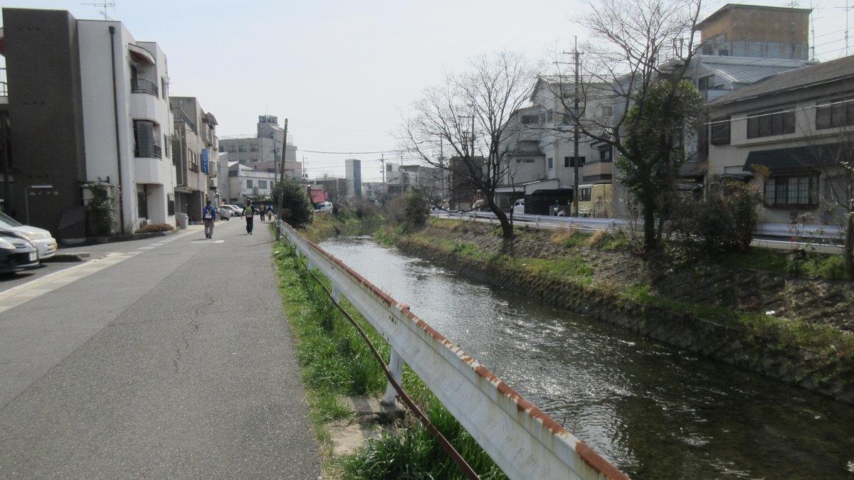1703-19-京都2目IMG_0354