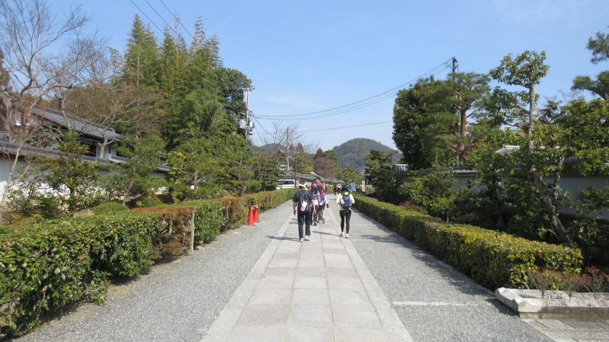 1703-11-京都2目IMG_0337