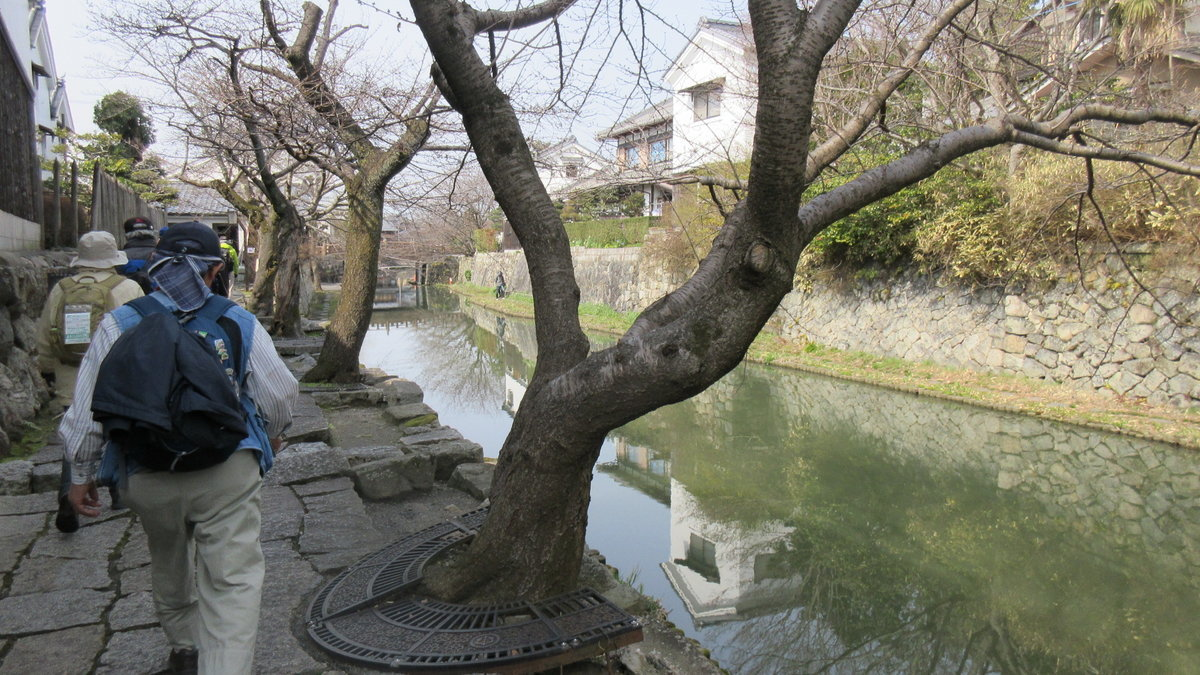 1703-05-琵琶湖③-IMG_0388