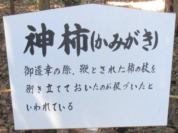 1704-35-青蓮寺ダム-IMG_0542説明