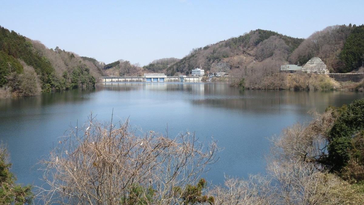 1704-23-青蓮寺ダム-IMG_0514