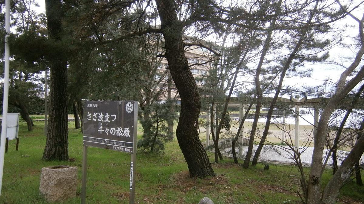 1704-21-琵琶湖④-File0044
