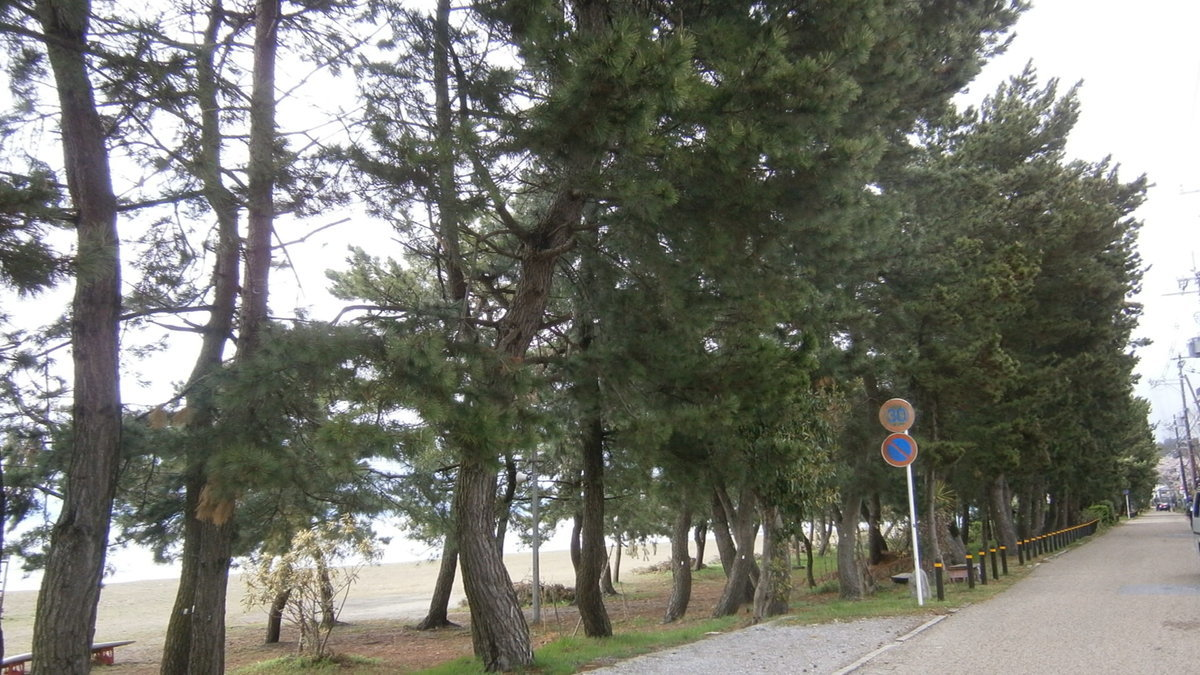 1704-22-琵琶湖④-File0045