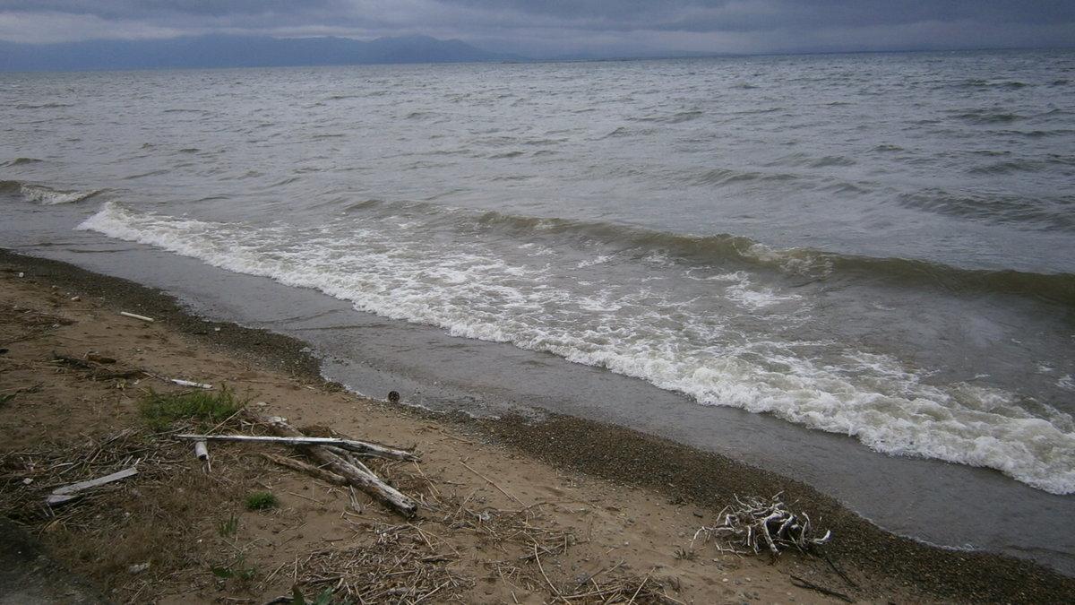 1704-11a-琵琶湖④-File0022