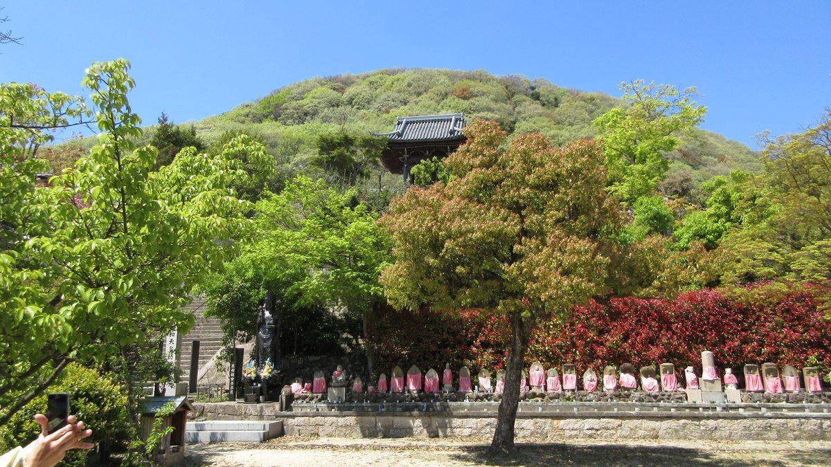 1704-28-甲山-IMG_0067