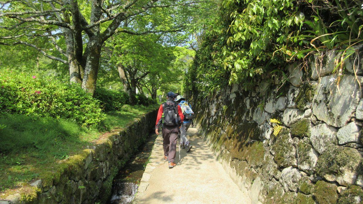 1704-04-比叡山-IMG_0109